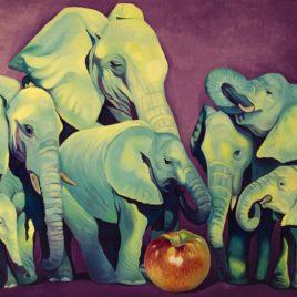 """Elephant's Soccer"""