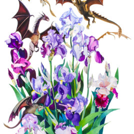 """Dragons in Irises"""