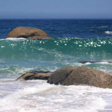 South Africa. Cool Bay