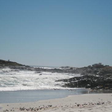 Cape Town. West Coast